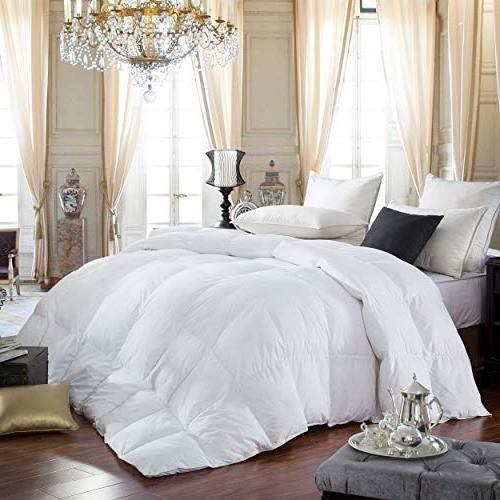Egyptian Bedding 600-Thread-Count Cotton Comforter, 750 Power, 70 King by 90-Inch,